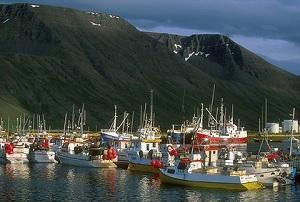 Iceland Property Bubble - Boats
